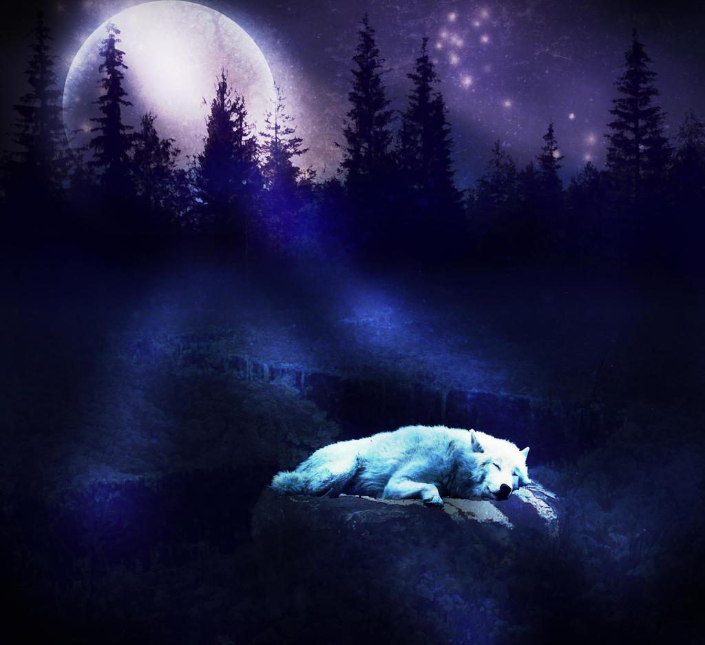 To Reap The Moon S Harvest Greg Patrick Traveler Poet