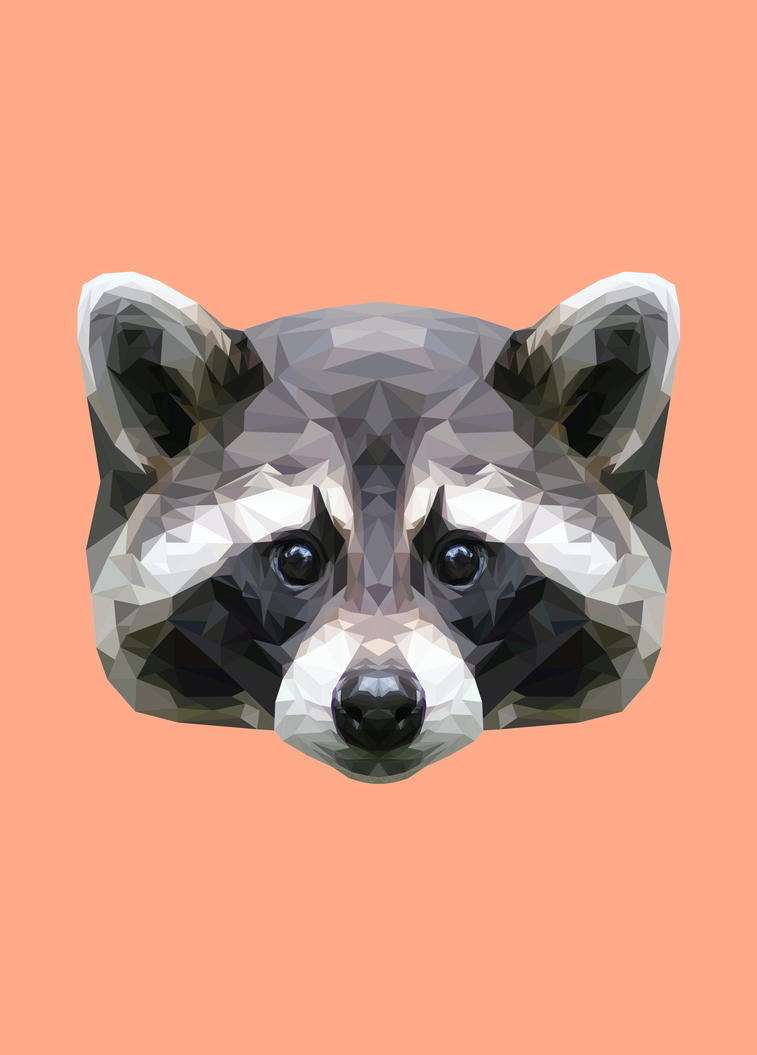 Raccoon Polygon Art  Raccoon Art