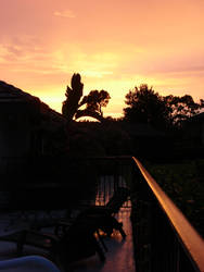 Floridian Sunset 2 by Xionbox
