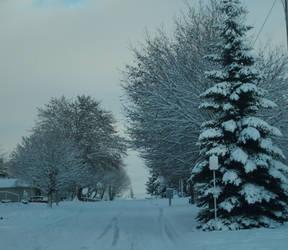 Buried Under Snow by seylin-emily