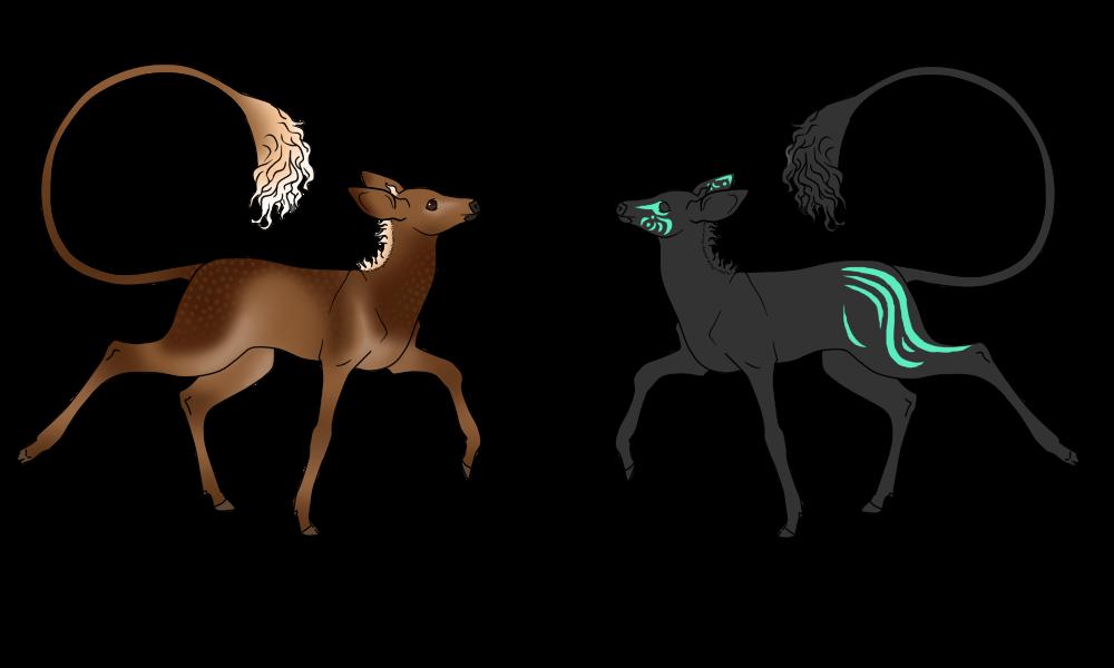 Tzofiya | Doe | Herd member by FALCONorthern
