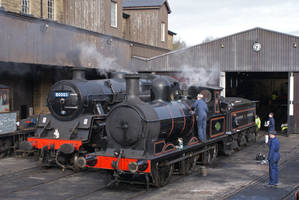 Steam Preparations