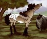 Equibreak Foal Training: Being groomed