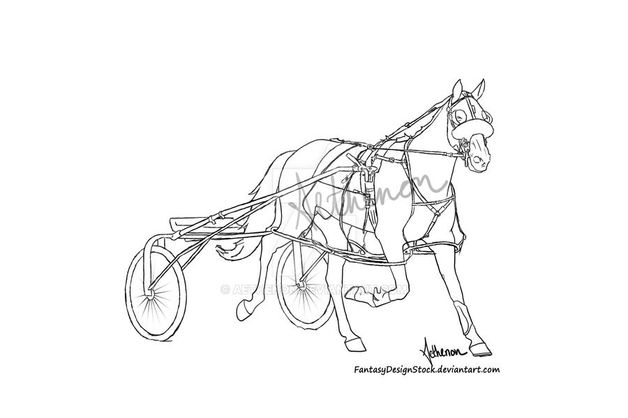 Harness Racing Lineart By Aethenon On Deviantart