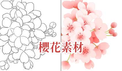 Cherry blossom psd