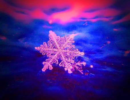+WinterWonderland+