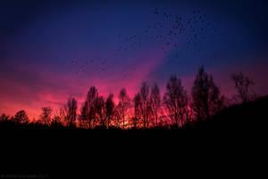 Vibrant Sky 3 by v4nssi