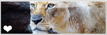 Dona una Firma, avatar o Banner. Lioness_stamp_by_nyot_leo-d85ueio