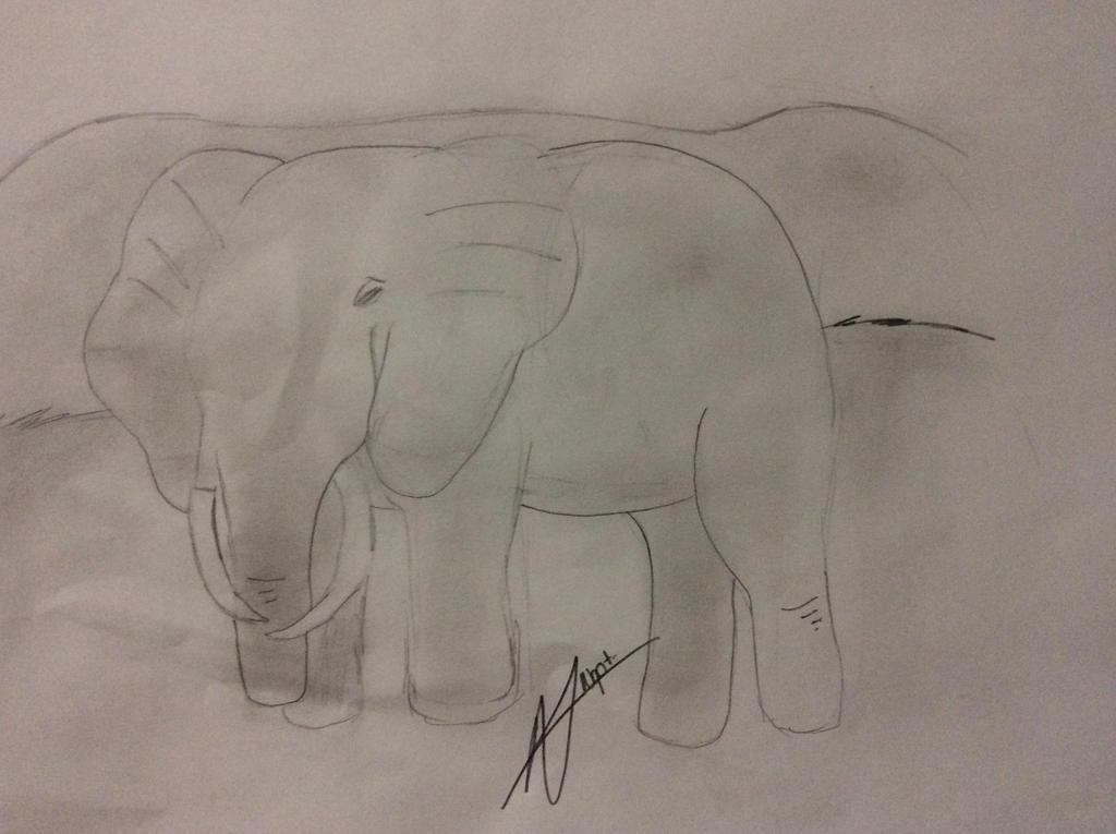 Galería de Naacht - Página 2 Elephant_by_nyot_leo-d8cb9ju