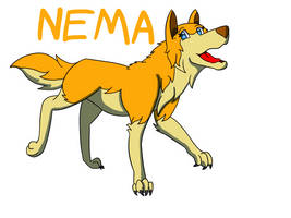 New Nema
