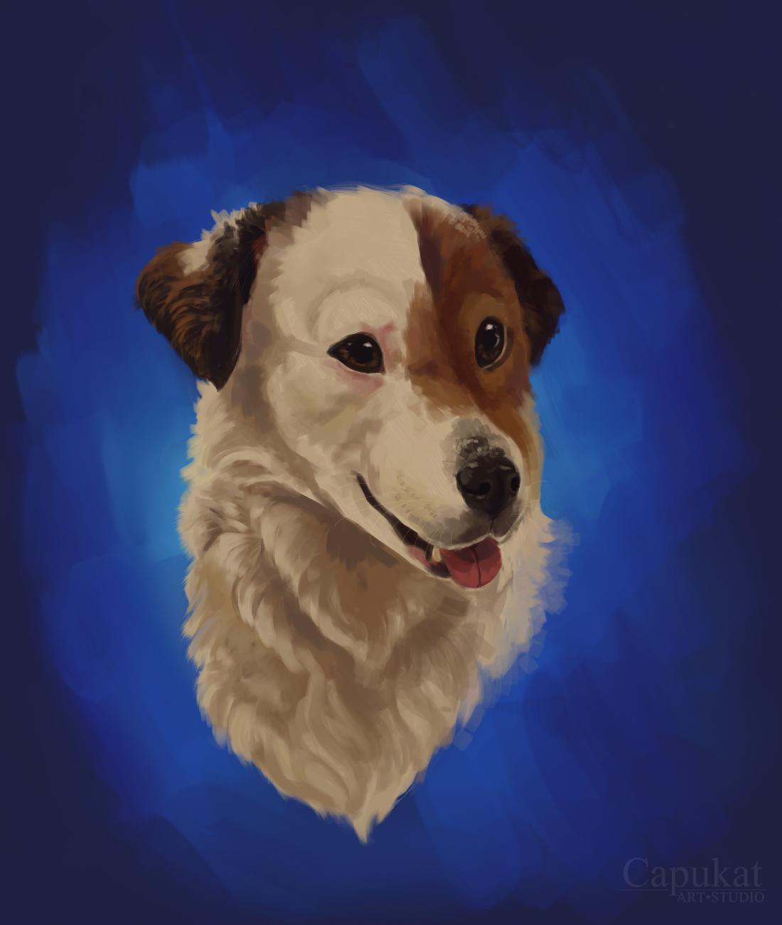 Pet Head Portrait by Capukat