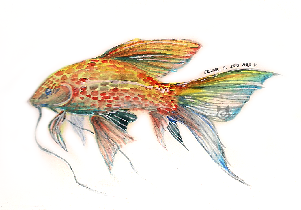 Mini watercolor Koi by Capukat