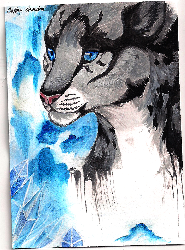 ACEO: Valiant by Capukat
