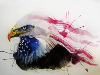 Star-spangled bird by Capukat