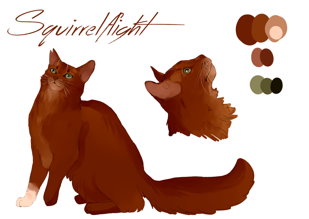 Squirrelflight - Character design by Whitefeatherink