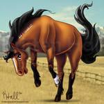 BLM Mustang by MonocerosArts