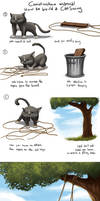 How to build a CatSwing