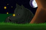wolf fireflies