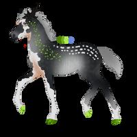 N3421 Padro Foal Design