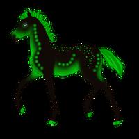 N3949 Padro Foal Design