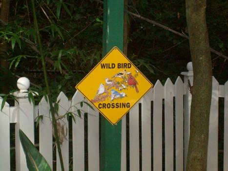 A Weird Crossing Sign...