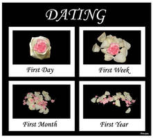 Dating by Principia