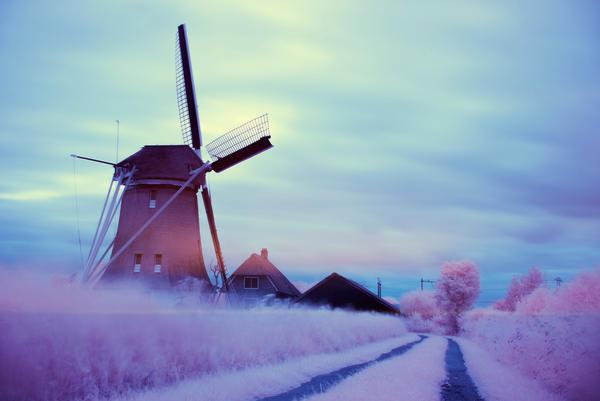 Dutch Paradise. by Annarigby