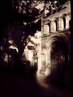 Black Shadows.... by caminopalmero
