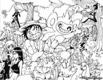One Piece and Pokemon -WIP-
