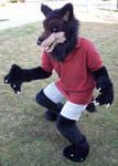 Werewolf partial fursuit