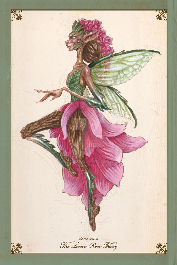 Rosa Fata - The Lesser Rose Faery by leedawnillustration