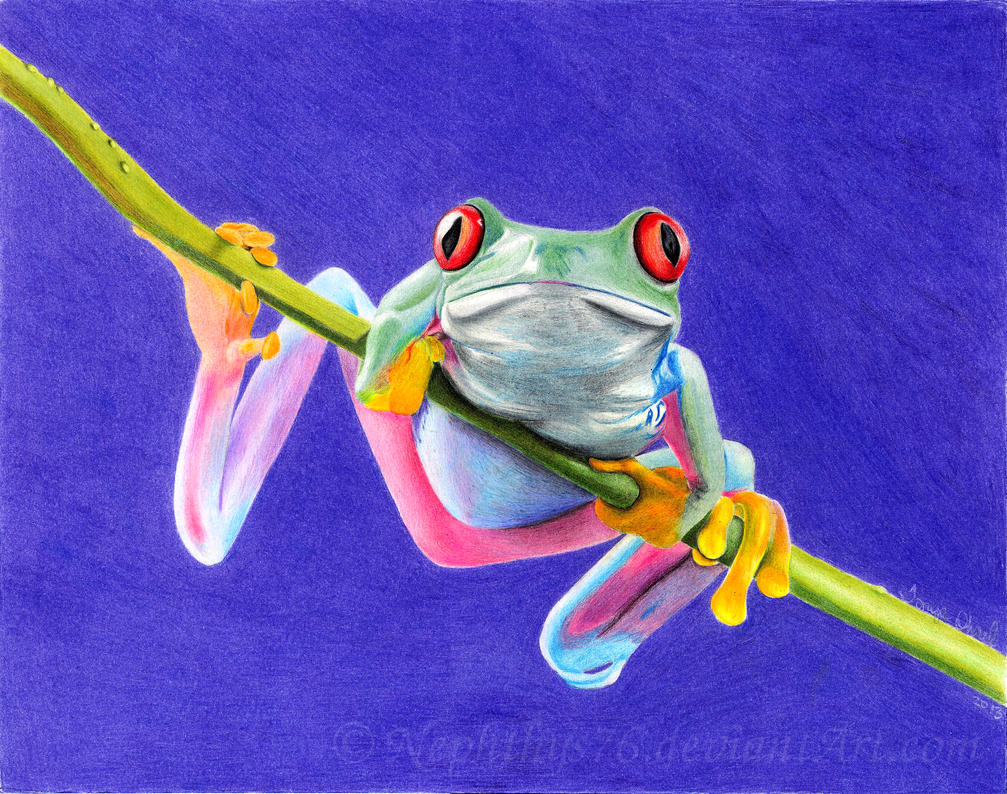 Tree Frog By Nephthys76 On Deviantart