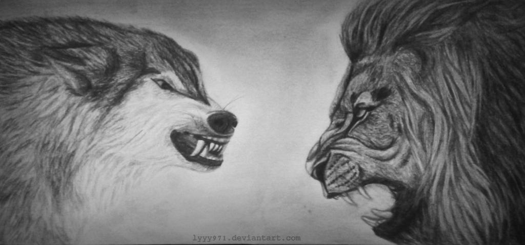волк и львица фото