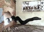 Snake II - Street art