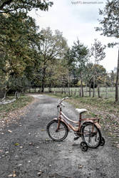 Forgotten bike