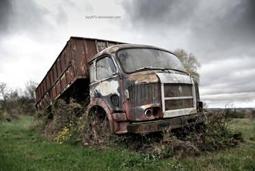 Abandoned truck III by lyyy971