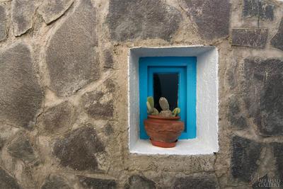Window by alfahd