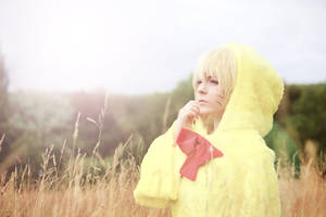 Uzumaki Naruto - Chicken