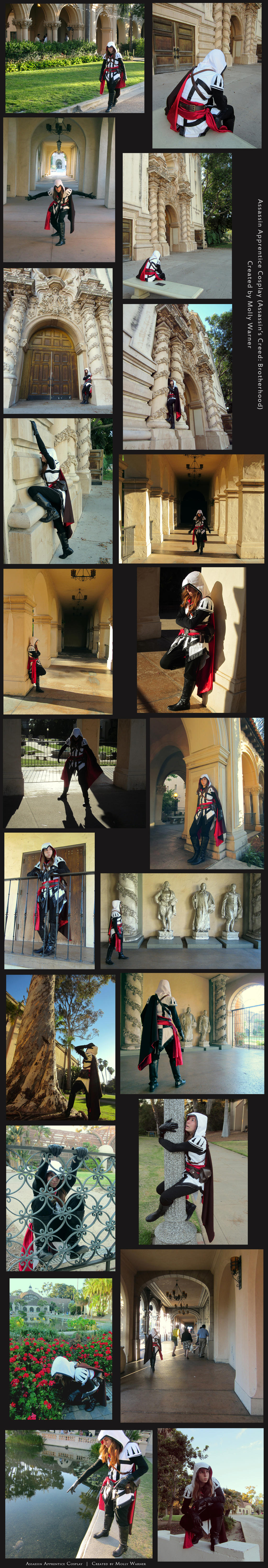 Assassin Apprentice Cosplay by SilverSkittle