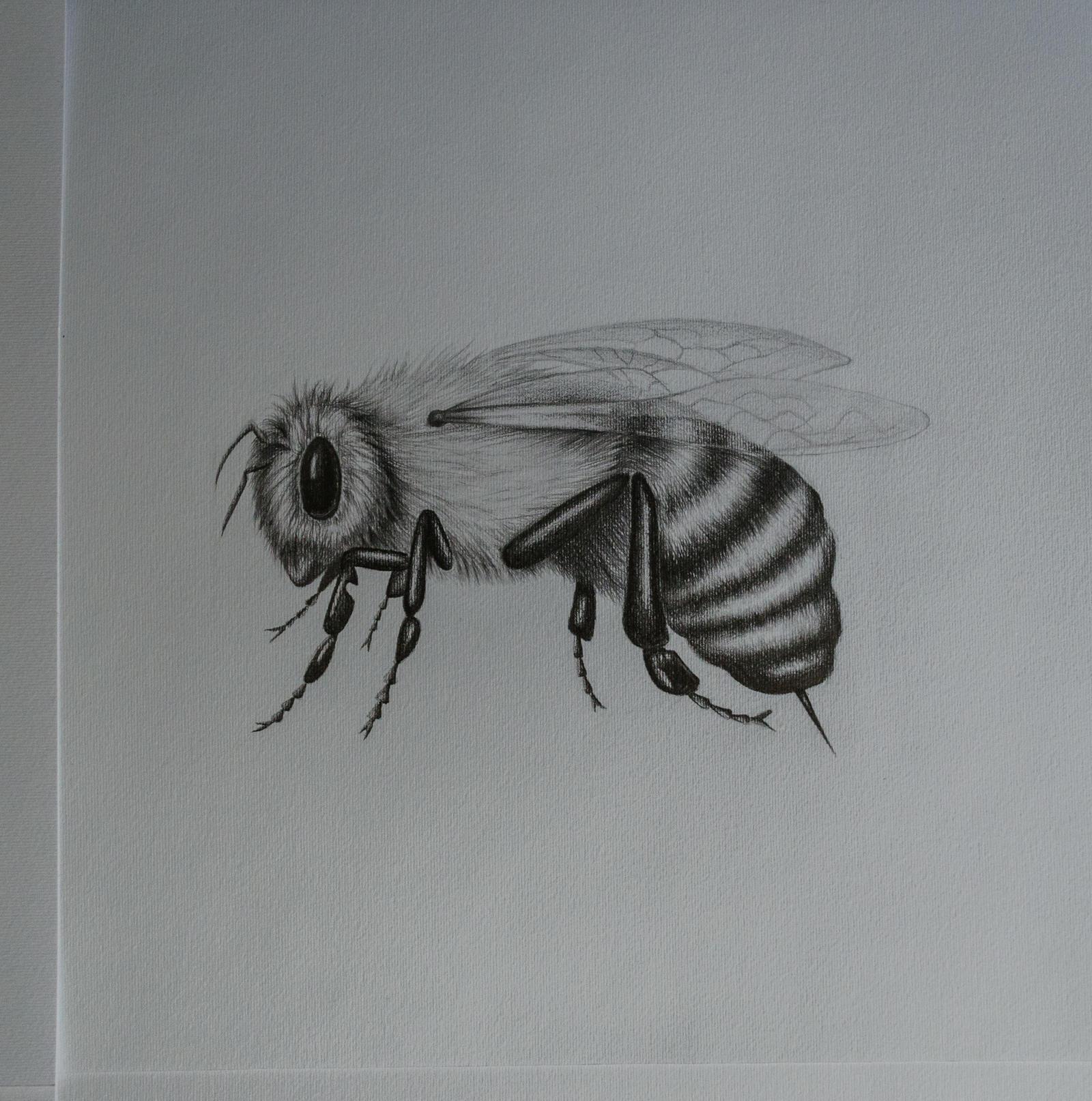 A bee #2