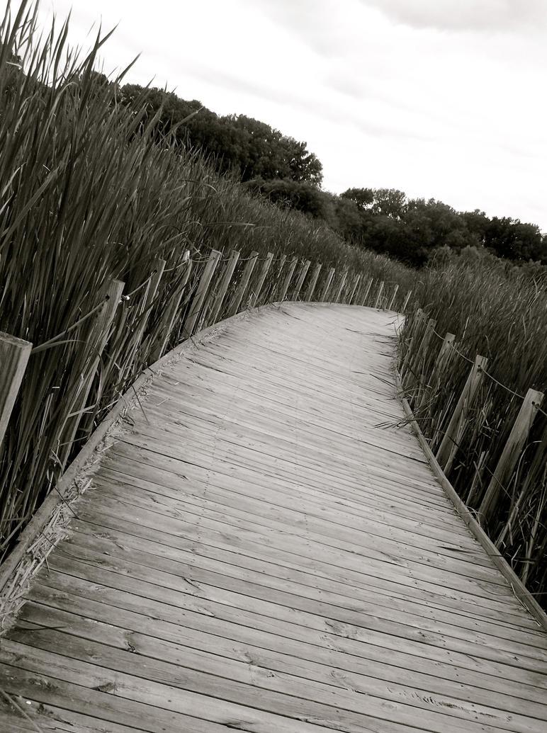 Path Askew by ycrad64