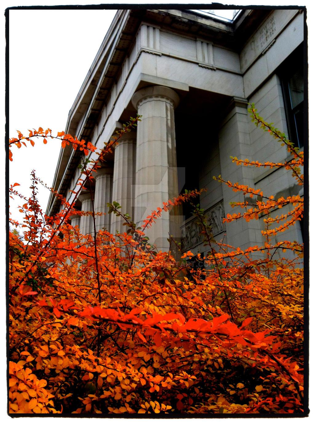 Autumn U of MN by ycrad64
