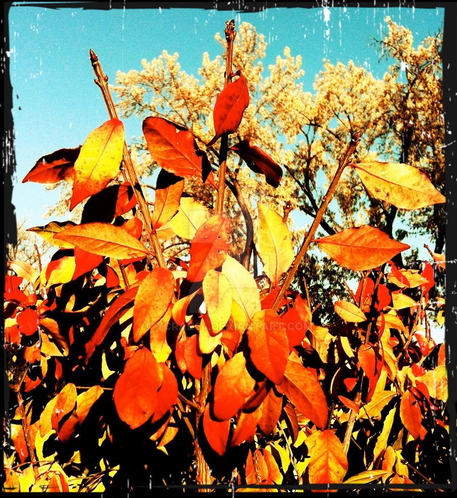 Retro Autumn by ycrad64