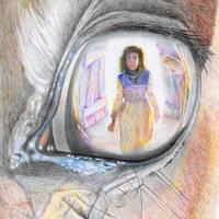 Eye Reflection by RobMitchem