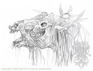 Kelpie head study by pallanoph