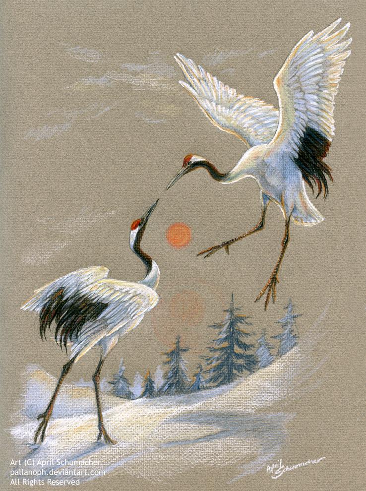 Dancing Cranes by pallanoph on DeviantArt - photo#3