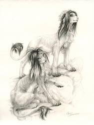 Xarhiji and Ujah by pallanoph