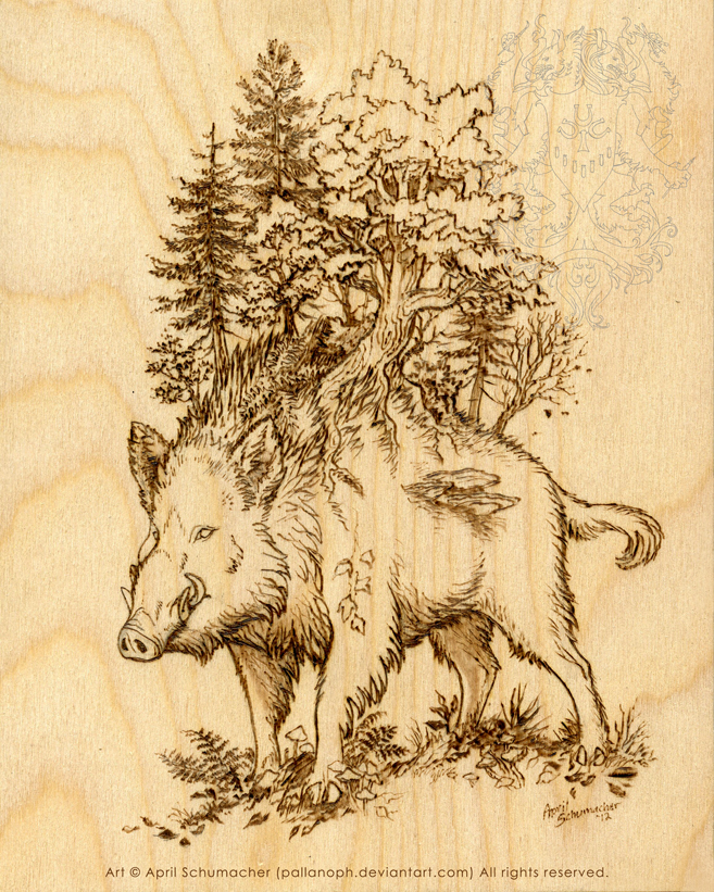 Boar of the Woods: Pyrography by pallanoph