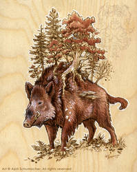 Boar of the Woods: Final by pallanoph