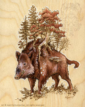 Boar of the Woods: Final